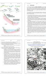 PG14362-17-COMUNE_BG_Relazione_geologica_Porta_SLorenzo23 rid